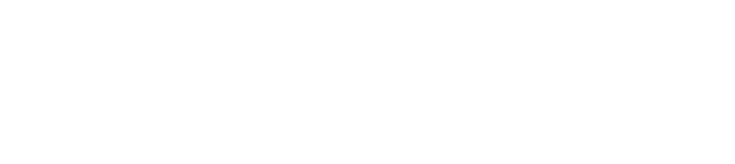 LiveFIN logo